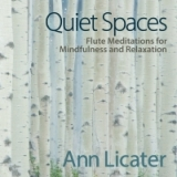 Quiet-Spaces-Cover-Art-Ann-Licater-1500x1500-300-dpi-JPEG-Final-9-27-18