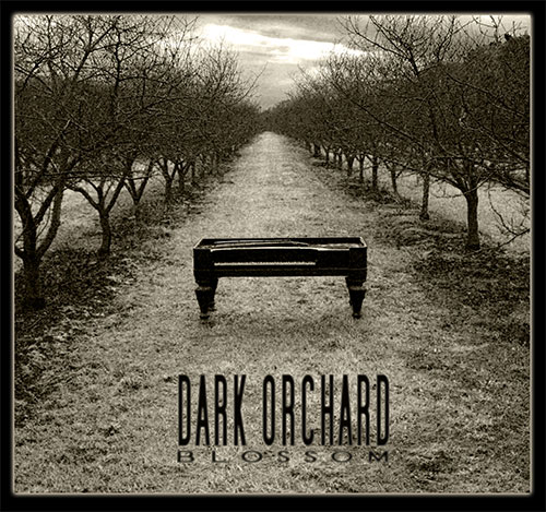 Dark Orchard – Blossom by Jim Casson