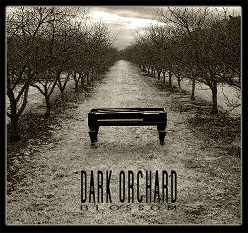 Dark Orchard – Blossom by Jim Casson