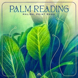 Palm Reading | Review by Dyan Garris